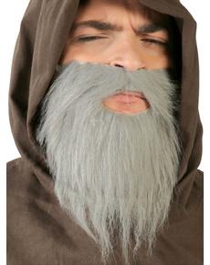 Barba grigia da adulto
