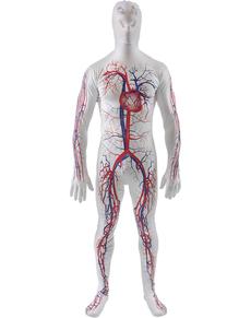 Costume da sistema circolatorio seconda pelle per adulto